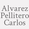 Alvarez Pellitero Carlos