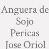 Anguera de Sojo Pericas  Jose Oriol