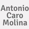 Antonio Caro Molina