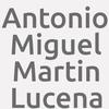 Antonio Miguel Martin Lucena