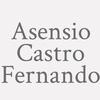 Asensio Castro Fernando