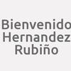 Bienvenido Hernandez Rubiño