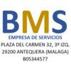 BM Servisur