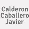Calderon Caballero  Javier