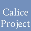 Calice Project