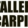 P & M Taller De Carpinteria