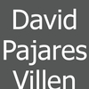 David Pajares Villen