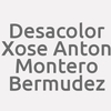 Desacolor. Xose Anton Montero Bermudez