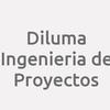 Diluma Ingenieria de Proyectos