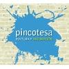 Pincotesa & Asociados, S.l.