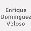 Enrique Dominguez Veloso