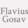 Flavius Gosav