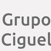 Grupo Ciguel