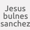 Jesus Bulnes Sanchez