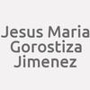 Jesus Maria Gorostiza Jimenez