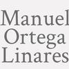 Manuel Ortega Linares