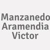 Manzanedo Aramendia  Victor