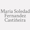 Maria Soledad Fernandez Castiñeira