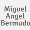 Miguel Angel Bermudo