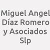 Miguel Angel Díaz Romero Y Asociados S.l.p.