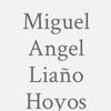 Miguel Angel Liaño Hoyos