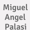 Miguel Angel Palasi