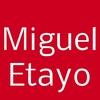 Miguel Etayo