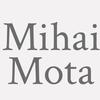 Mihai Mota