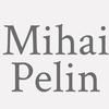 Mihai Pelin