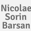 Nicolae Sorin Barsan