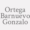 Ortega Barnuevo Gonzalo