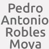 Pedro Antonio Robles Moya