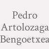 Pedro Artolozaga Bengoetxea