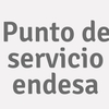 Punto De Servicio Endesa
