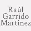 Raúl Garrido Martinez