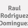 Raul Rodriguez Dominguez