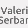 Valeri Serban