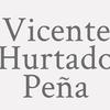 Vicente Hurtado Peña