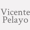 Vicente Pelayo