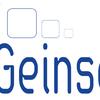 Grupo Geinsema Facility Services