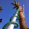 Quitar una palmera grande