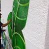 Pintar logo tipográfico en pared de local