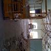 Demolición y desescombrado