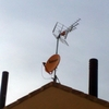 Foto: Reparación de antenas