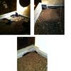 Reparación Goteras y Filtraciones