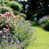 Trabajos en jardin privado