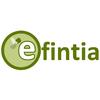 Efintia S.l.