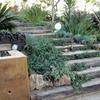 Servicio de jardineria  instalacion y mantenimiento