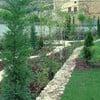 Colocar Césped En Jardín