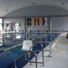 Adaptar piscina comunitaria de 16x8  de cloro a sal